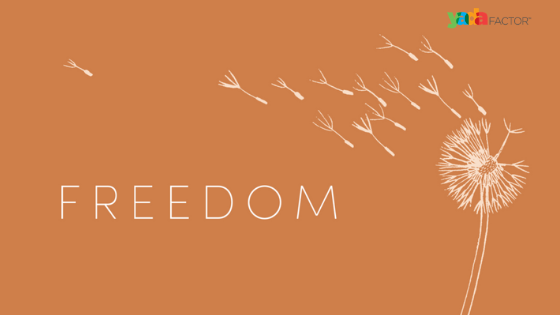 The Freedom To Listen